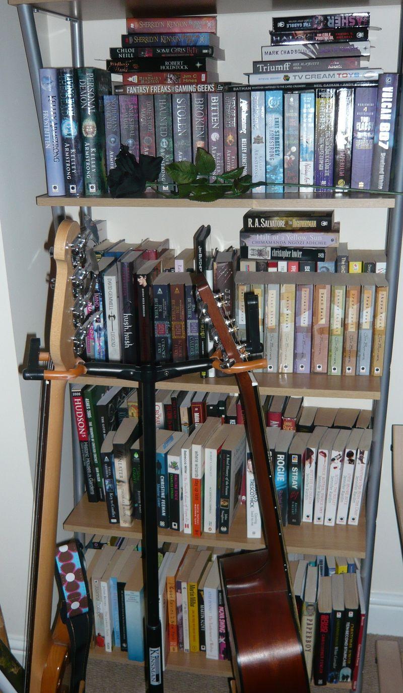 Adeles shelves (4)