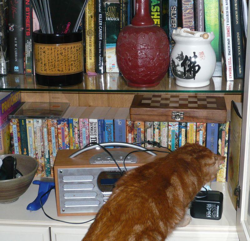Adeles shelves (2)