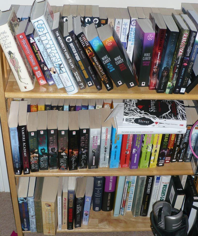 Adeles shelves (3)