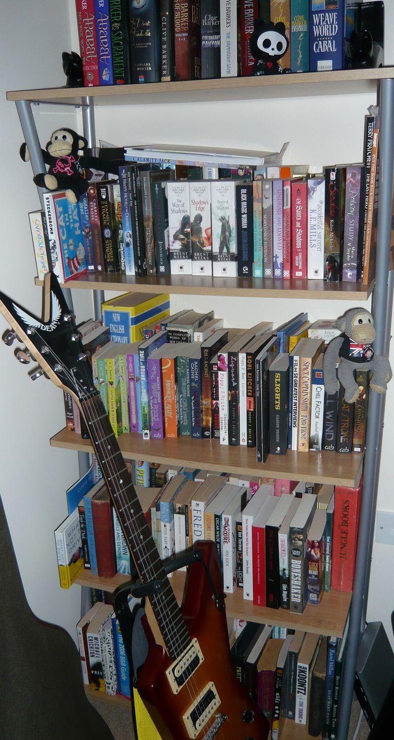 Adeles shelves (6)